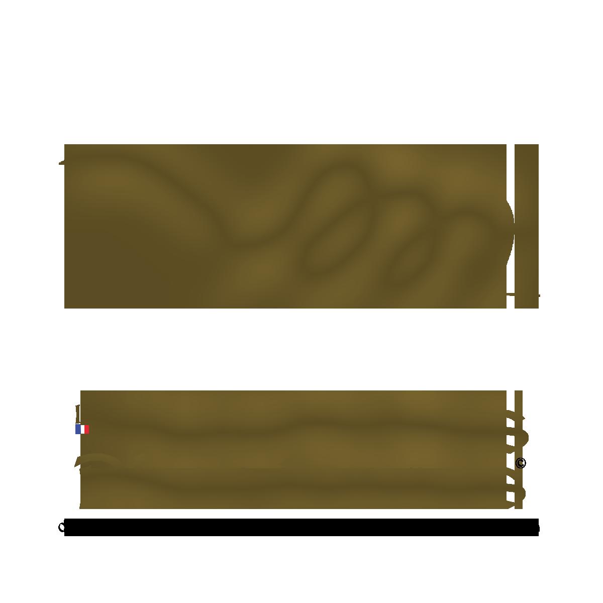 Les Spartiates Phocéennes